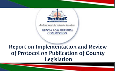 Report on Implementation and Review of Protocol on Publication of County Legislation